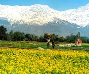himachal-tour-package
